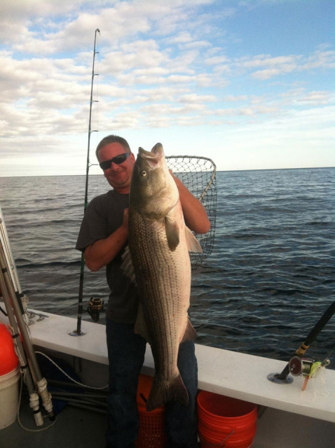 RI Striped Bass